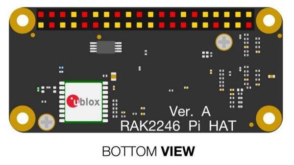 RAK2246 Bottom View